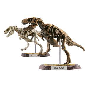 Dinosaur Master (box of 10)