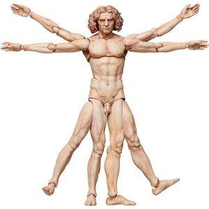 figma SP-075 Vitruvian Man
